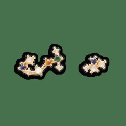 Zodiac Constellations Earrings