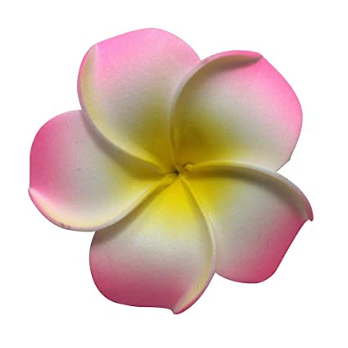 DreamLily Women's Fashion 3 Pcs Hawaiian White Plumeria Flower Foam Hair Clip Balaclavas for Beach