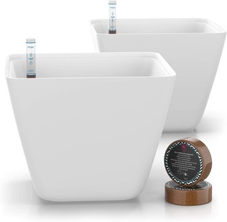 Gardenix Decor Self-Watering Pots (2-Pack)