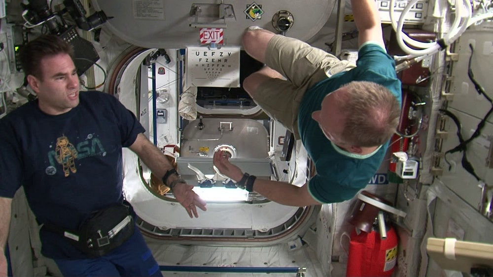 Space Expedition Artists Nasa movie in space