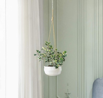 Mkono Ceramic Hanging Planter, 8 Inches