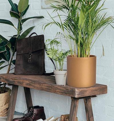 D'vine Dev Round Modern Planter, 10 Inches