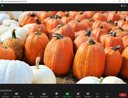 These Halloween Zoom backgrounds include fun photos that transport you to the pumpkin patch.