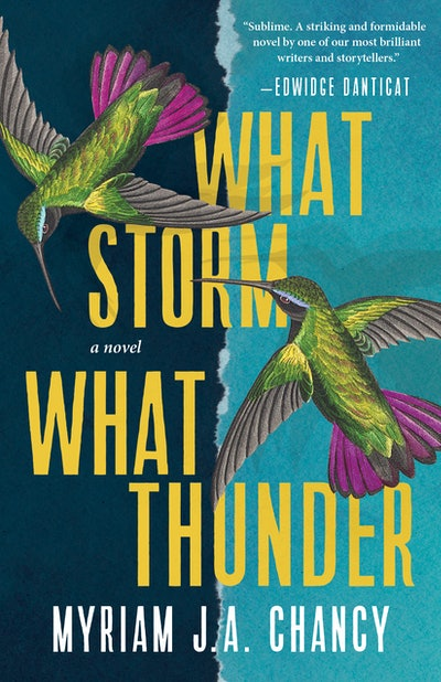 'What Storm, What Thunder' by Myriam J. A. Chancy