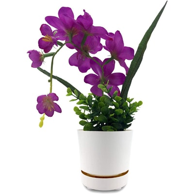HBServices Self Watering Planter