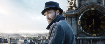 Jude Law as Dumbledore in Fantastic Beasts