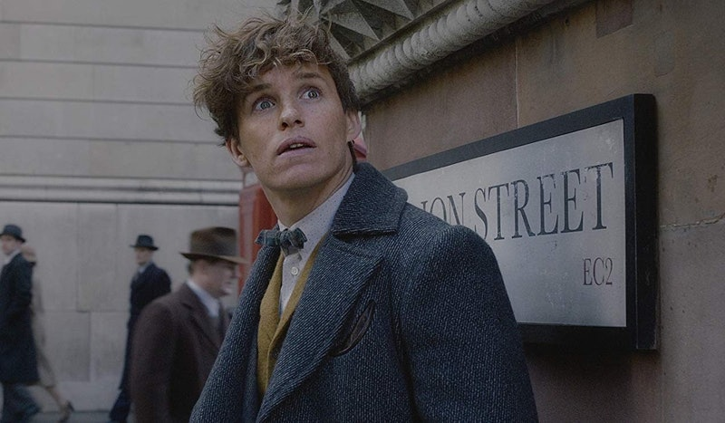 'Fantastic Beasts & Where To Find Them'