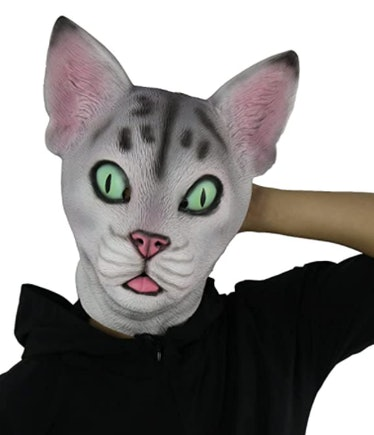 These Zoom Halloween costume ideas include the funny lawyer cat fail.