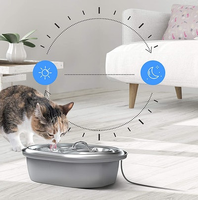 PETLIBRO Cat Water Fountain Stainless Steel