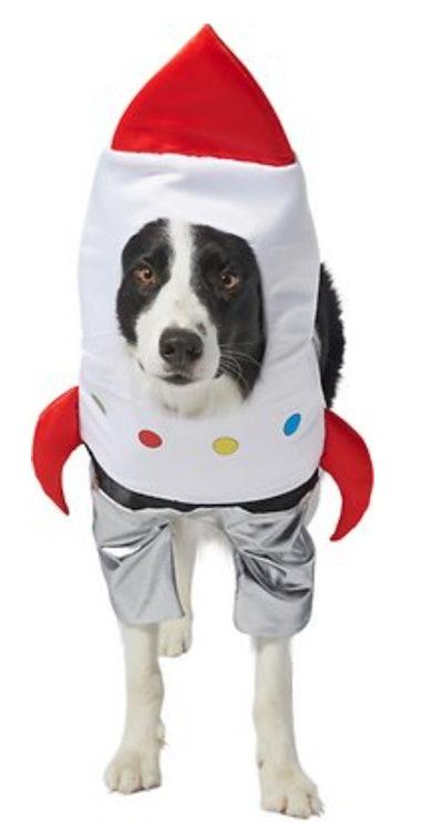 Dog dressed in rocket ship costume