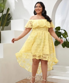 SHEIN Plus Fold Off Shoulder Lace Dress