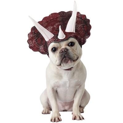 Dog wearing dinosaur headpiece