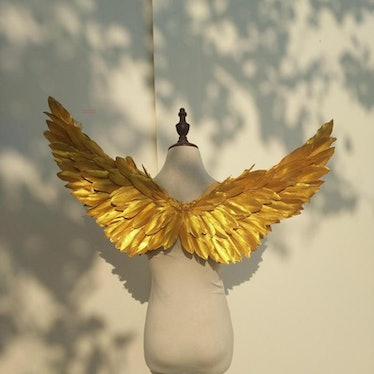 Golden Snitch Wings for Harry Potter Halloween Costume