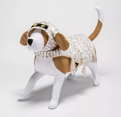 Stuffed puppy in Mummy costume