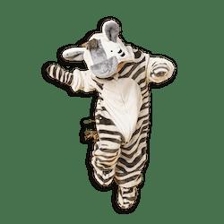Zozo Zebra Costume