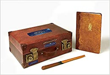 Accessory Set for Newt Scamander from Fantastic Beasts for Halloween