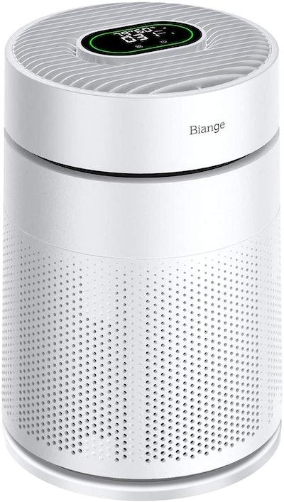 Biange Air Purifier