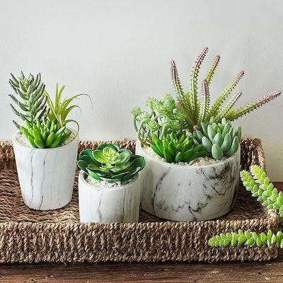 MOTINI Artificial Succulent Plants (3-Pack)