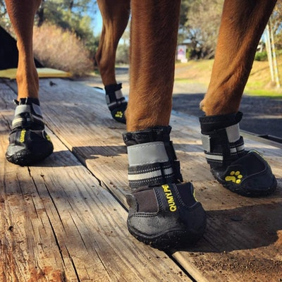 QUMY Dog Boots (4 Pack)