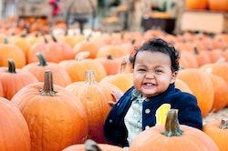 Baby sitting in a pumpkin patch
