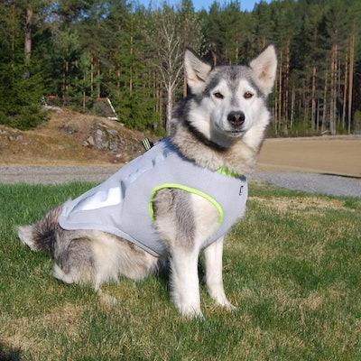 SGODA Dog Cooling Vest