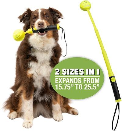 Hyper Pet Dog Ball Launcher
