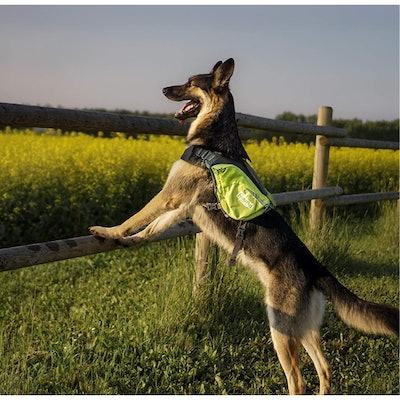 Outward Hound Lightweight Dog Backpack
