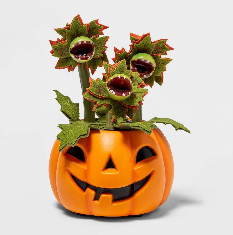Target's Halloween 2021 succulents includes spooky new plants.