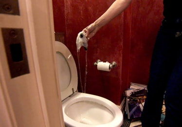 Sonja Morgan pulling her Blackberry out of a toilet