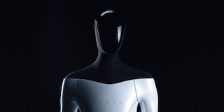 Tesla aims to show off a prototype humanoid robot as soon as next year.