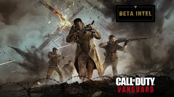 Vanguard beta