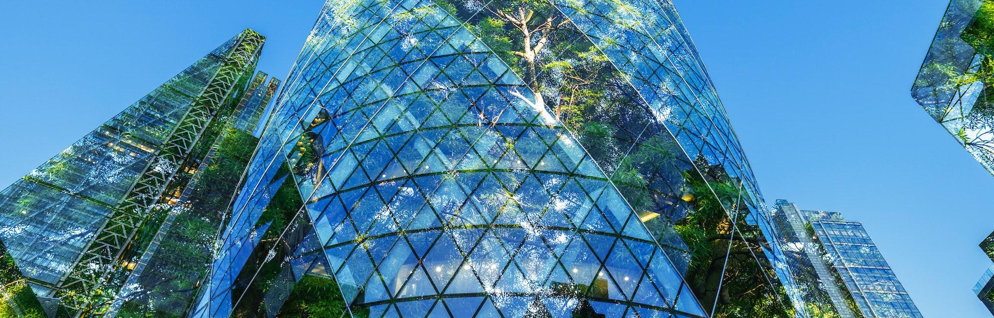 eco-friendly city