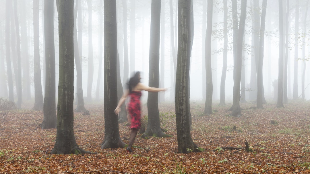 MODEL RELEASED Silhouette of a woman running through an autumnal beech forest like a ghost, Thuringian Forest, Thuringia