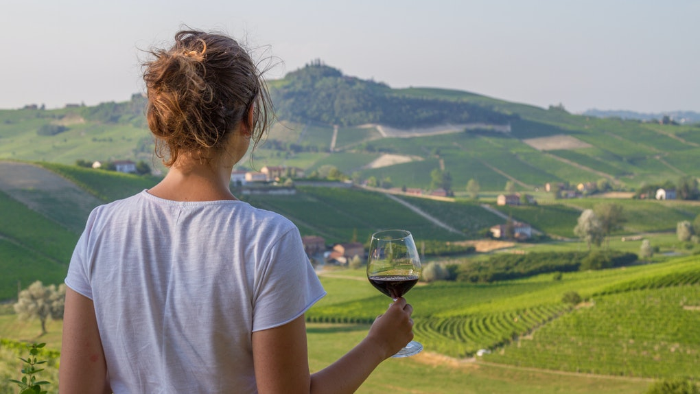 handsome girl holding a glass of red wine looking amazing green vineyards in the italian region of Piedmont, Alba, Barolo, Italy