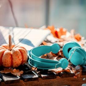 Orange pumpkin, headphones and leaves near laptop computer on a table. Autumn season time