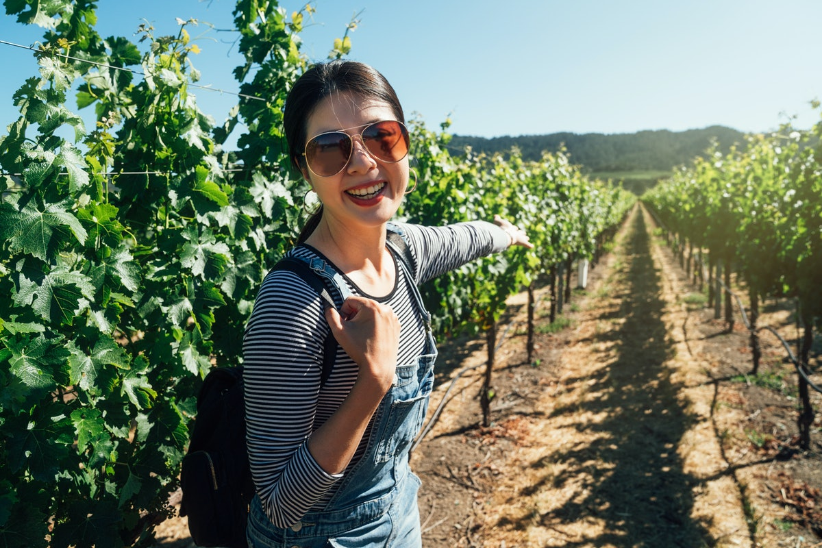 asian woman standing in napa valley vineyard cheerfully showing camera the blooming plants trees in spring. young girl in sunglasses pointing finger in grape winery sunny day. female visitor smiling