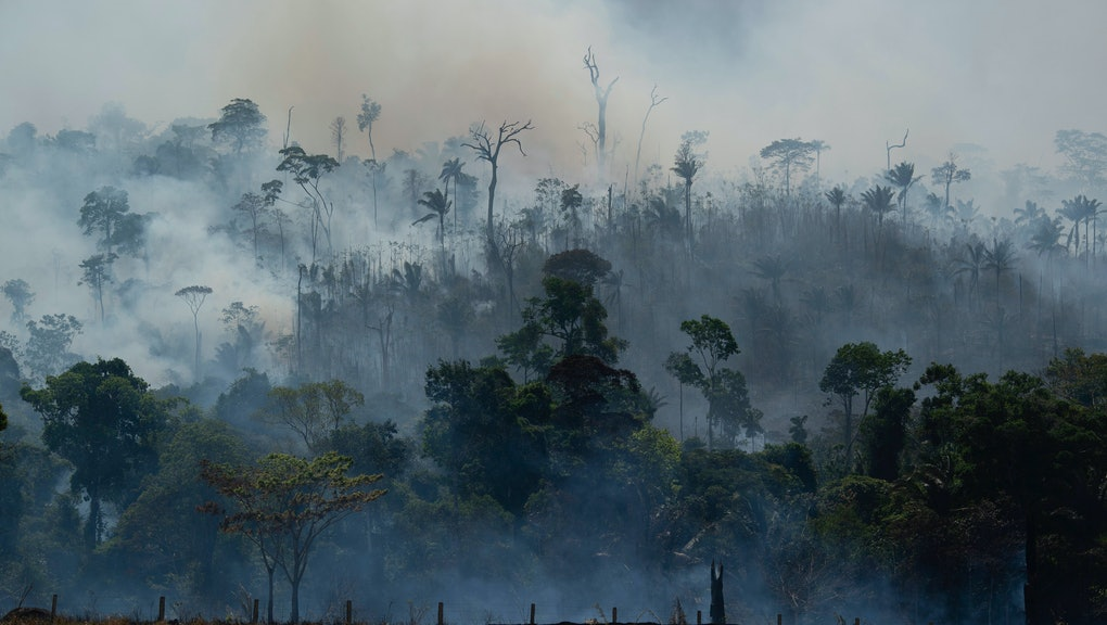 Fire consumes the Amazon rainforest in Altamira, Brazil, . Fires across the Brazilian Amazon have sparked an international outcry for preservation of the world's largest rainforest