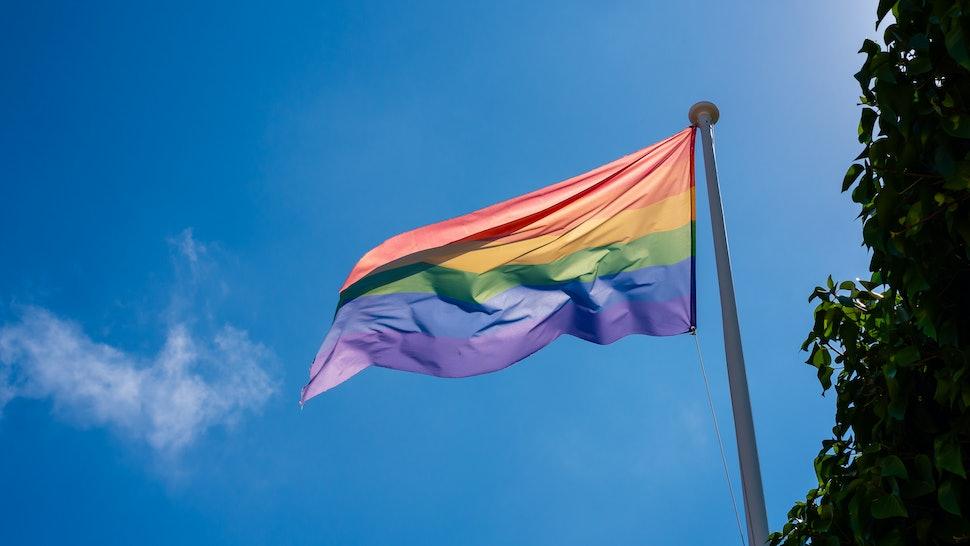 The gay pride rainbow flag