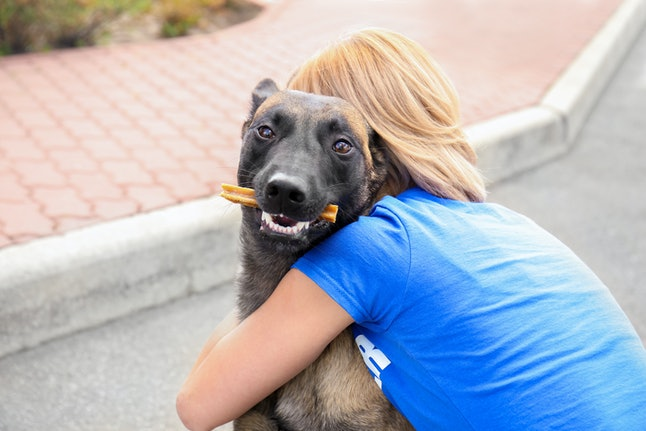 You can volunteer online with the Humane Society.
