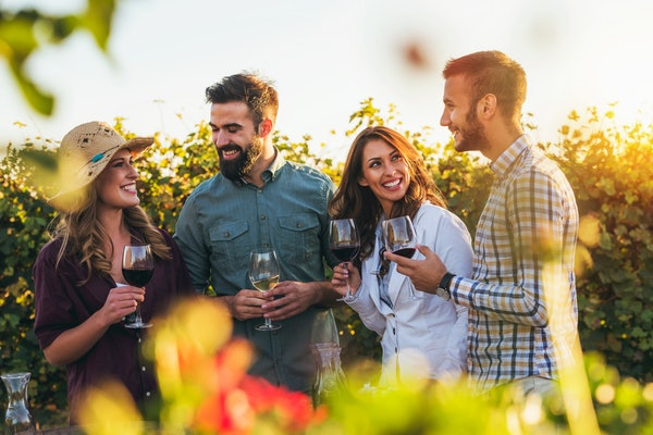 A group of friends at a winery laughs and holds up their wine glasses in front of the vines at sunset.