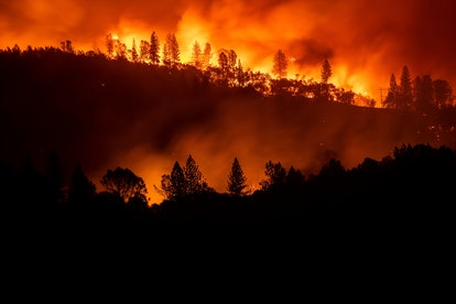 The Camp Fire burns along a ridgetop near Big Bend, Calif., on . Crews working to contain the blaze ...