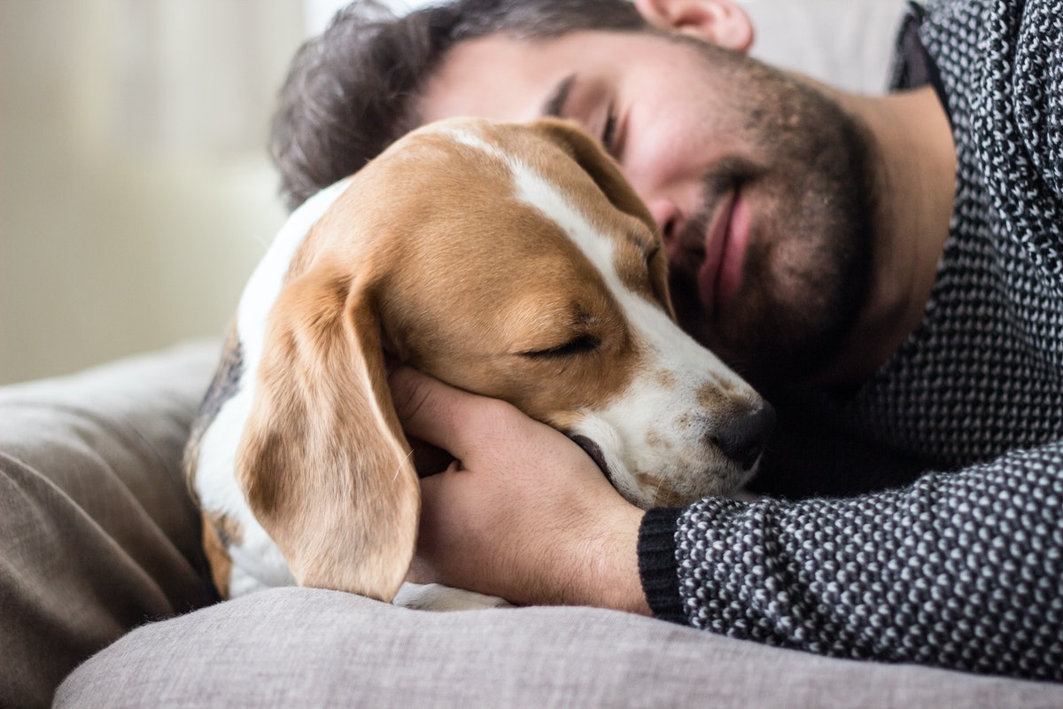 A man cuddles and takes a nap with a dog on the couch.