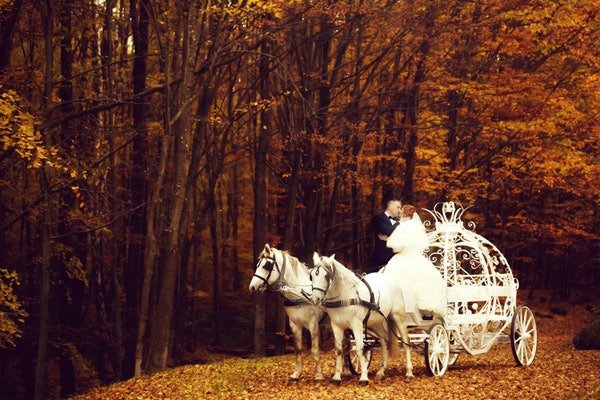 Young wedding romantic couple of bride in white dress and bridegroom in suit in cinderella carriage with horses in autumn deep orange forest outdoor on natural background, horizontal picture
