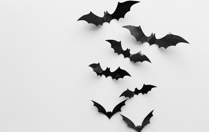 halloween, decoration and scary concept - black bats flying over white background