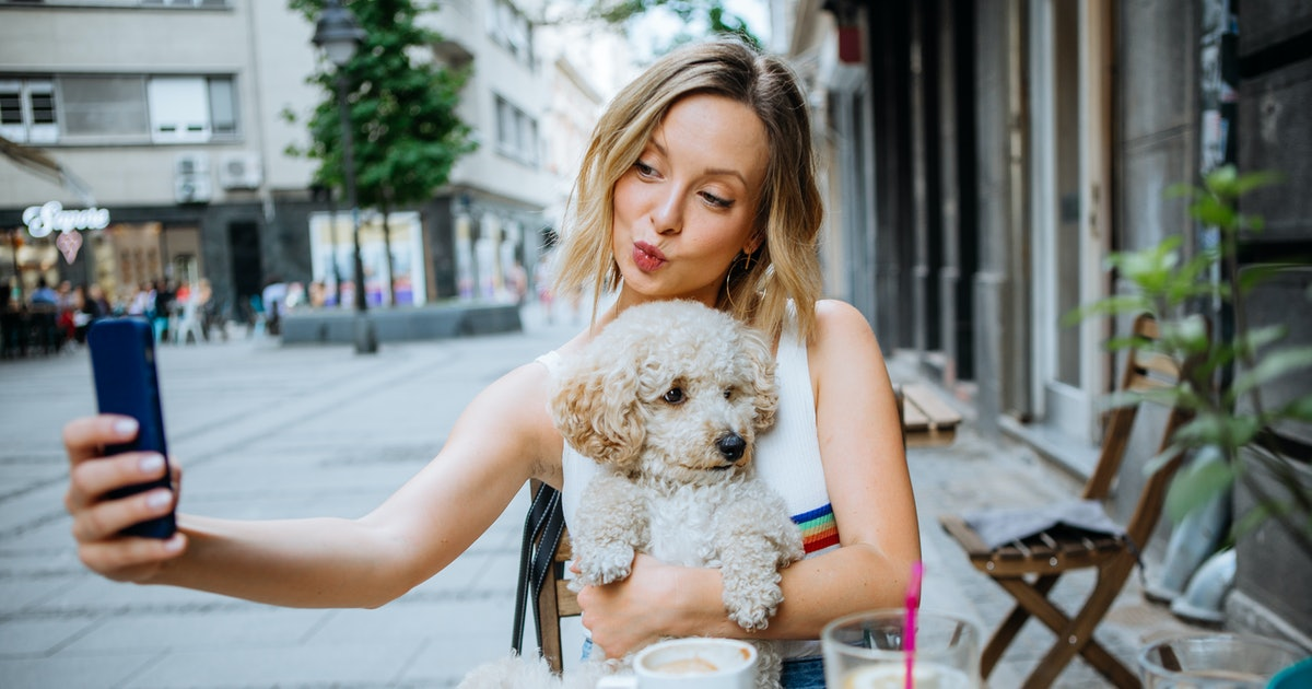 6 Brunch Places To Bring Dogs In NYC That Are All The Woof Right Now