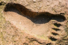 The imprint of a person's foot in granite. Big Foot. Footprint on the ground of the yeti.
