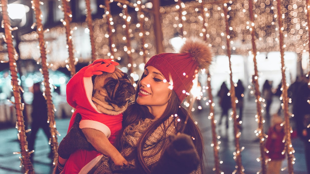 A woman and her French bulldog stand under twinkly lights at an outdoor holiday market.