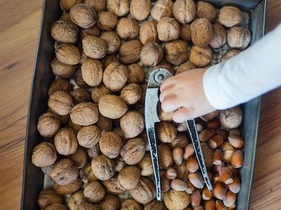 Fresh nuts and a nutcracker