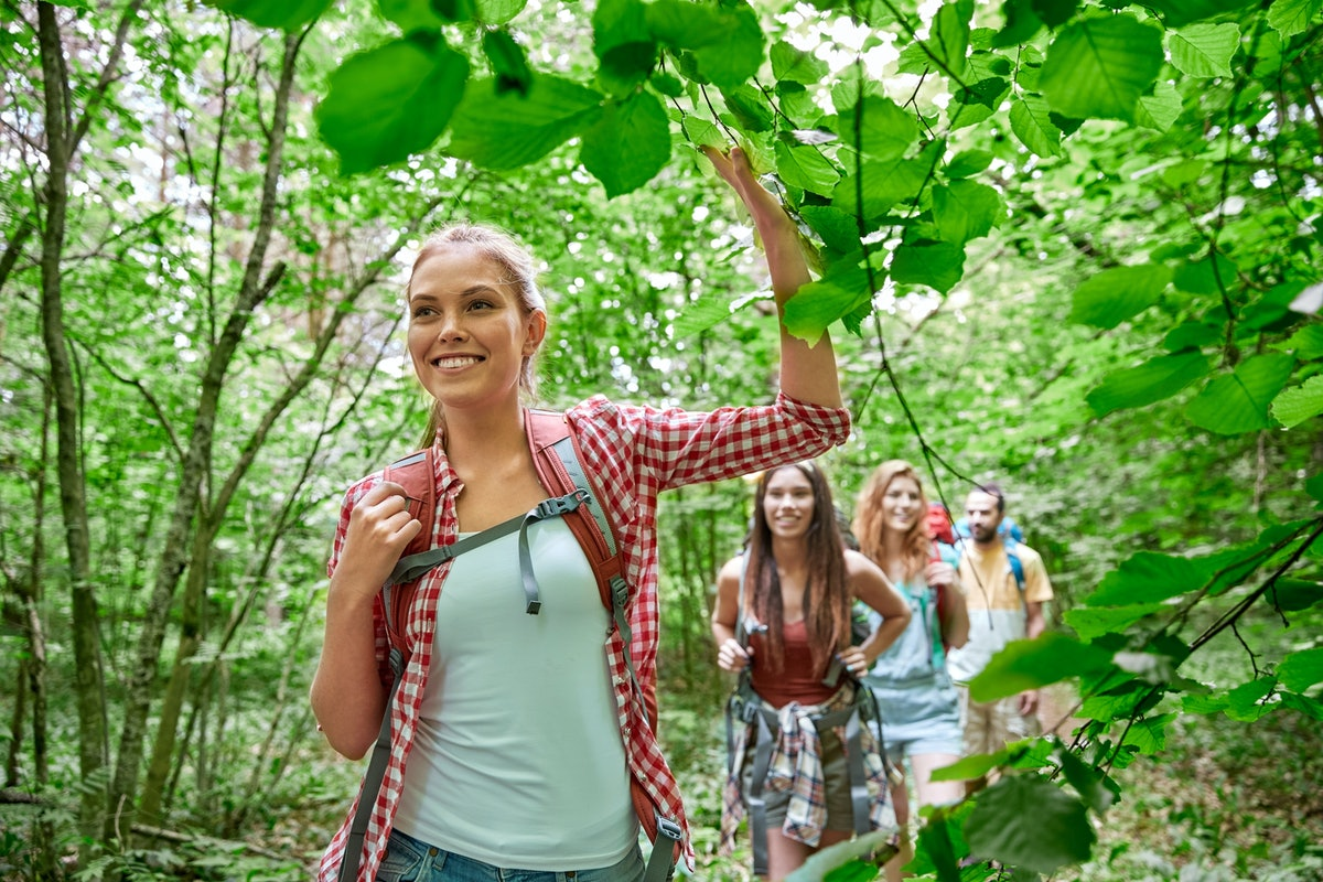 adventure, travel, tourism, hike and people concept - group of smiling friends walking with backpack...