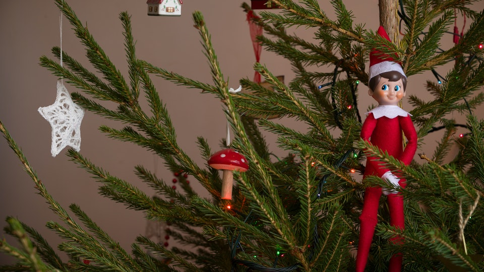an elf on the shelf perched on a decorated christmas tree with lights.